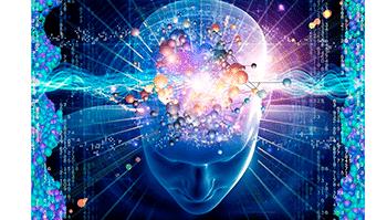 Corso di Alta Formazione in Neuroleadership